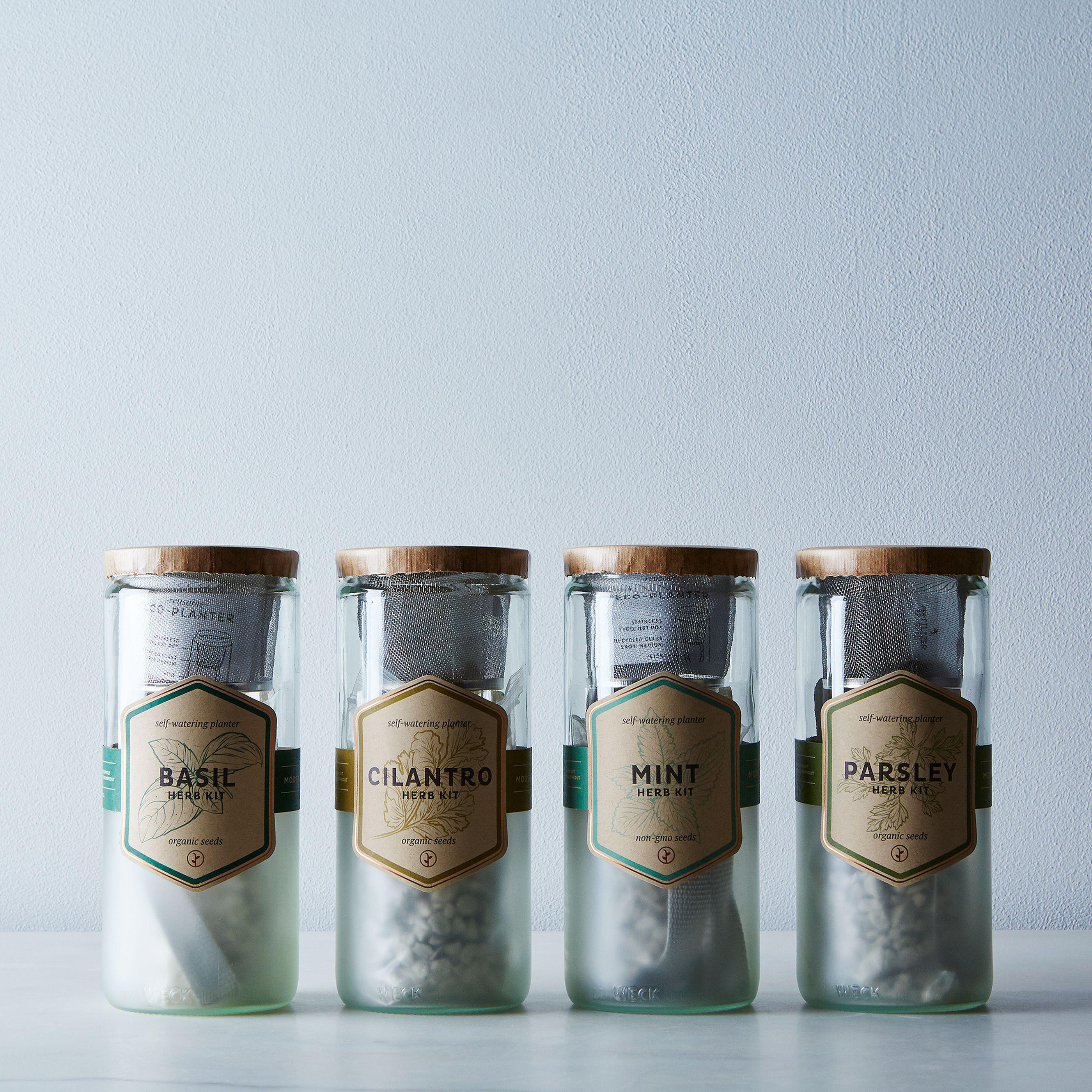 Eco Planter Herb Kit on Food52