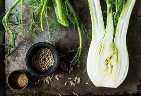 Community Picks Recipe Testing -- Fennel