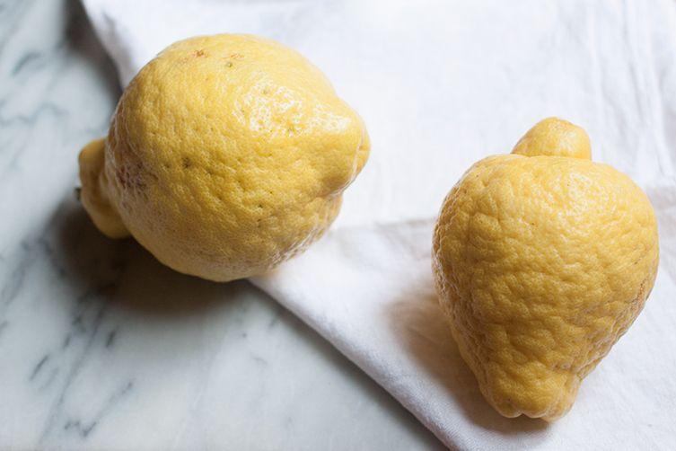 Homemade Cedrata (Citron Drink)