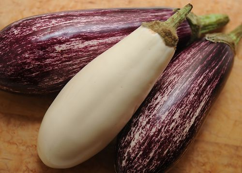Your Best Eggplant Recipe