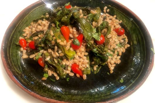 Shisito Pepper Salad