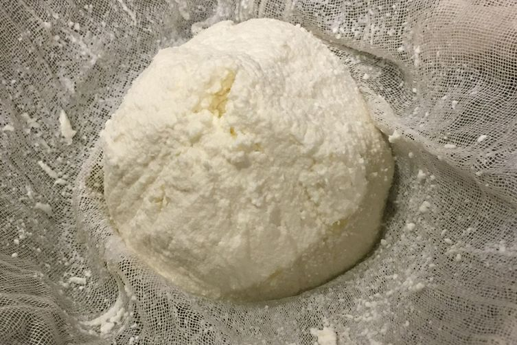 Homemade Queso Fresco in One Hour