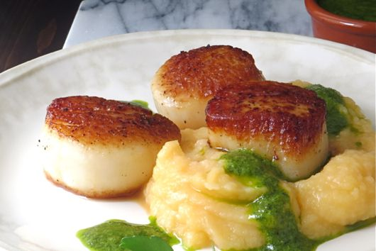 pan seared scallops over mash