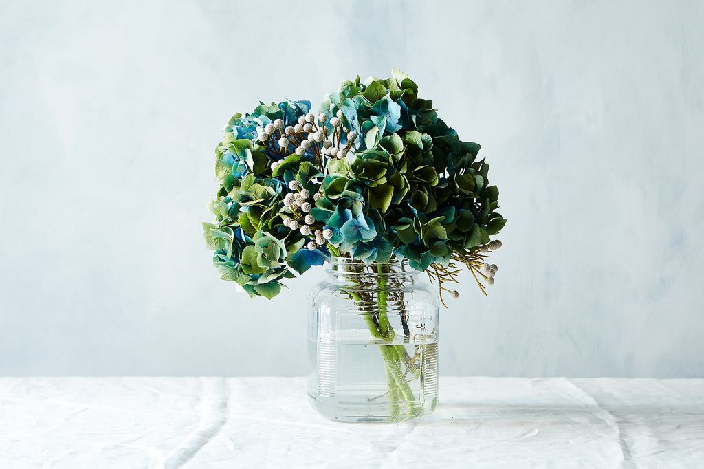 Hydrangeas and Pods_Mark Weinberg_Alexis Anthony