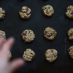 Olive Oil Oatmeal Cookies