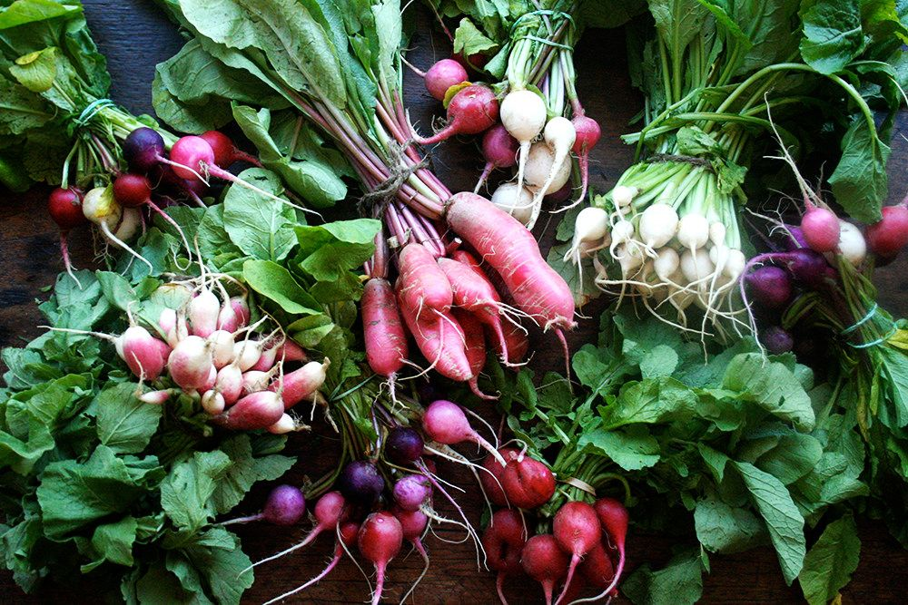 Radishes on Food52
