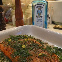 Salmon by Anna Grazia