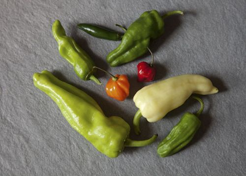 Your Best Chili Pepper Recipe