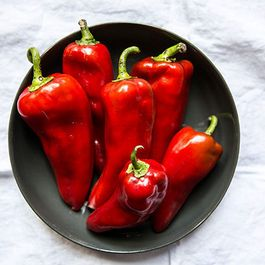 STARRING RED PEPPERS by marsiamarsia