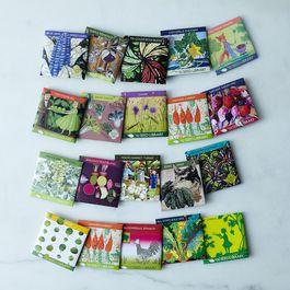 Seasonal Seed Collection (Set of 5)