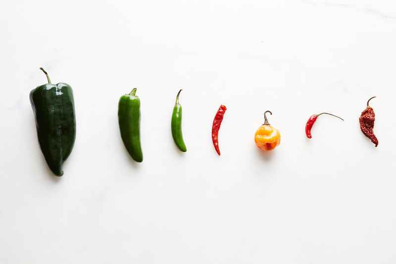 All About Chiles
