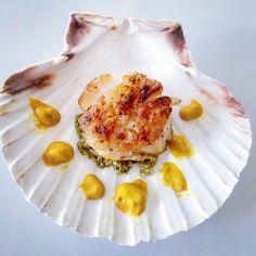 Seared scallops over pesto and quinoa paste