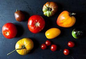 66b165c2 550b 4a96 b781 8ab9b54df388  expensive tomatoes