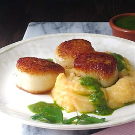 E38585e1 dc7f 4f59 9c85 9d08644eafc0  pan seared scallops over mash2