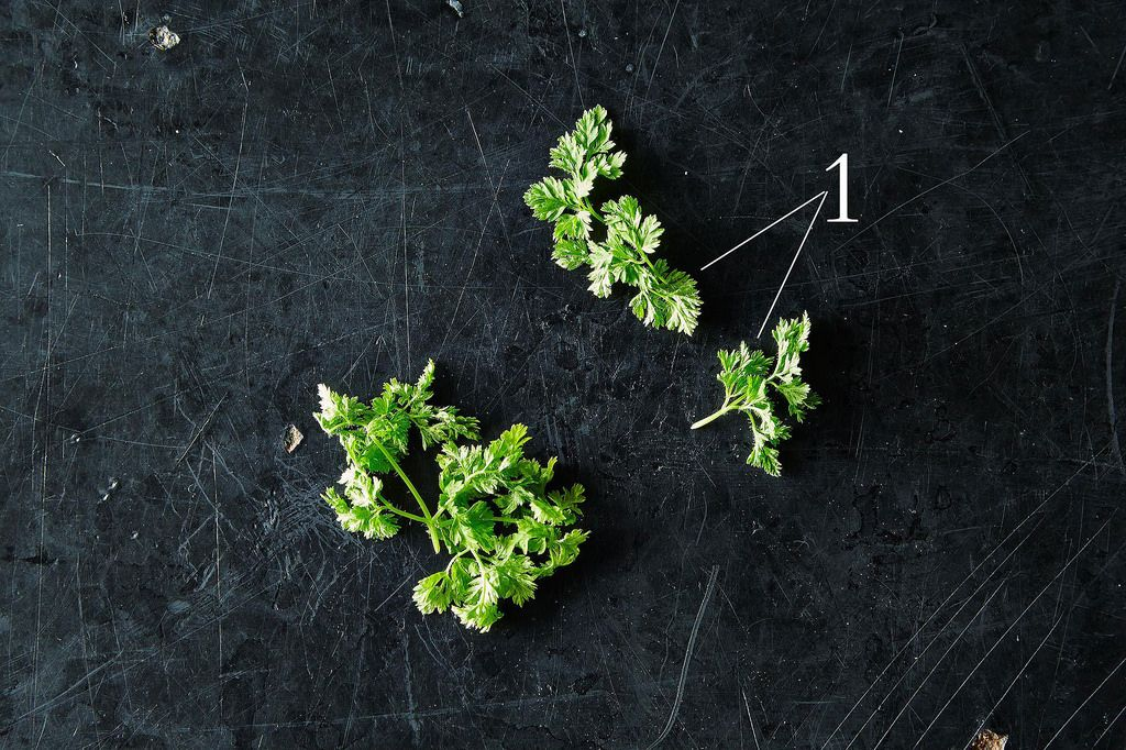 Chervil and the Best Ways to Use It, from Food52