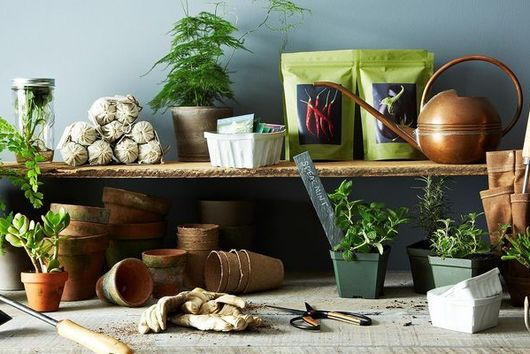 23 Tips from the Experts for Making Your Garden Grow