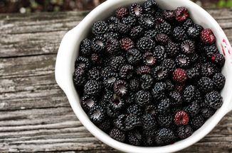 D3536f8c 3f37 474c b5fe aaedcf323091  raspberries 2