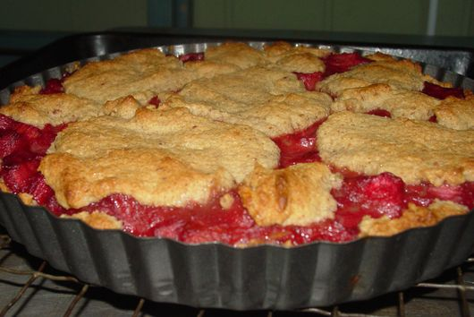 Rhubarb Cake Pie