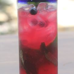 Blueberry Mint Mojito