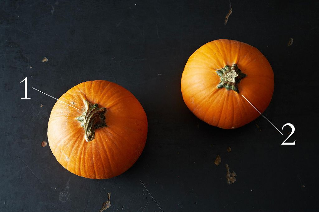 Everything You Need to Know About Pumpkins, from Food52