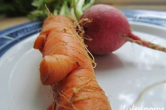 06bda915 6753 4446 85ae 5106869a7bc2  carrot radish08