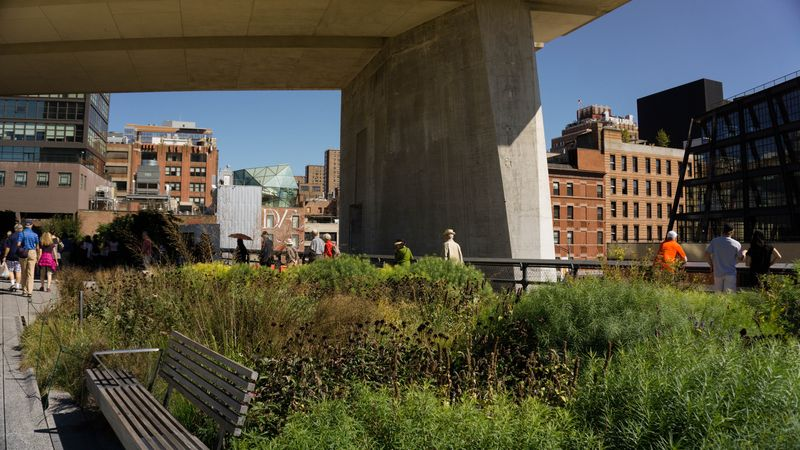 The High Line in Chelsea.