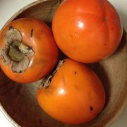 994382b4 2dc1 4a79 8154 e0be4d12d1f9  47393 how do i know if my persimmons are ripe