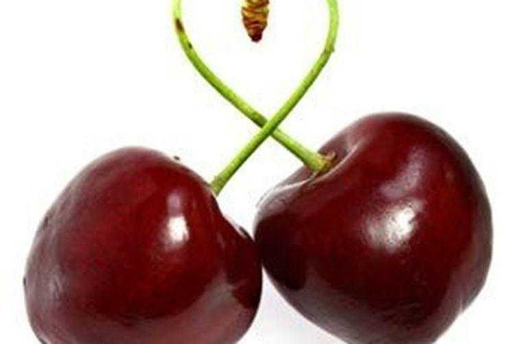 Bourbon Cherry fudge Swirl