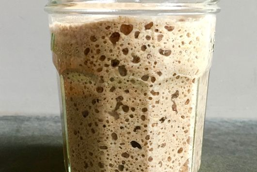 Sam Fromartz' Sourdough Starter