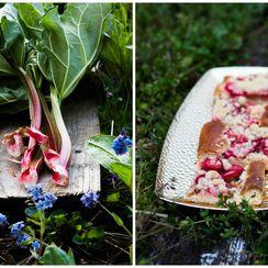 Rhubarb Strawberry Datschi