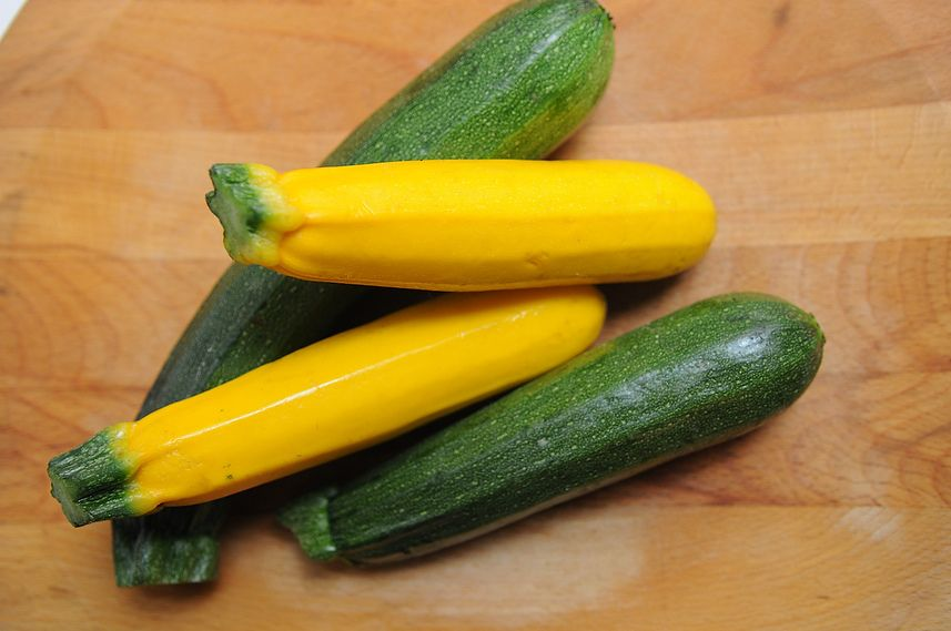 Summer Squash Recipe Contest