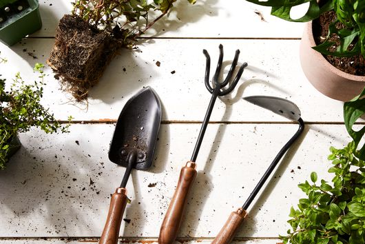 17 Essential Gardening Tools the Pros Swear By