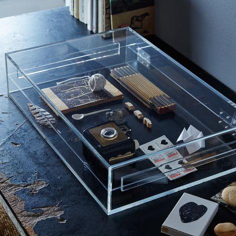 Acrylic Curiosities Box