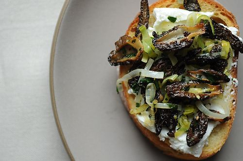 Morel Crostini