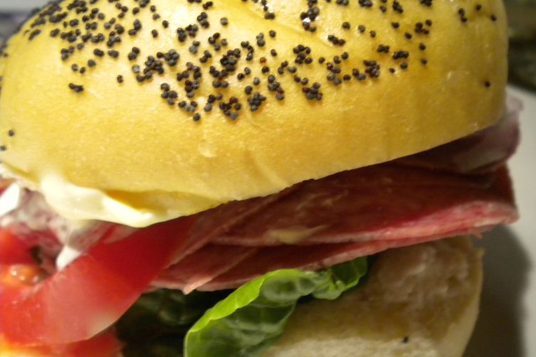 The Salami and Onion Sandwich