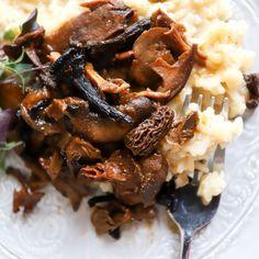 Mascarpone Risotto with Stewed Wild Mushrooms