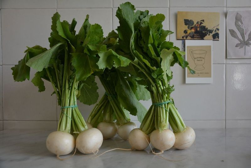 These are late winter/early spring turnips—peppery, crisp, and bittersweet, with bright green bunches.