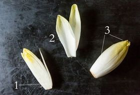 Endive: The Twice-Grown Diva