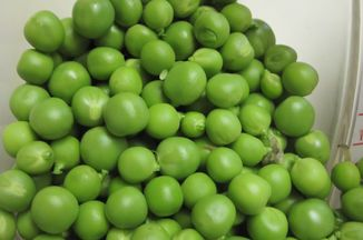 201727e7-d960-4200-b480-376439f43d5f.shelled_fresh_green_peas