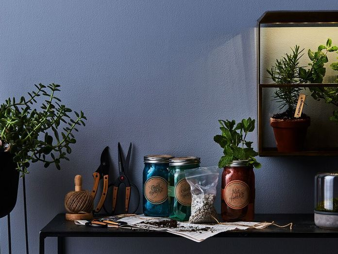 The Perfect Gifts to Make a Green Thumb Out of Anyone