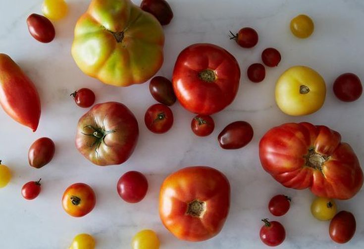 Finalists: A&M Smackdown / Your Best Tomato Recipe