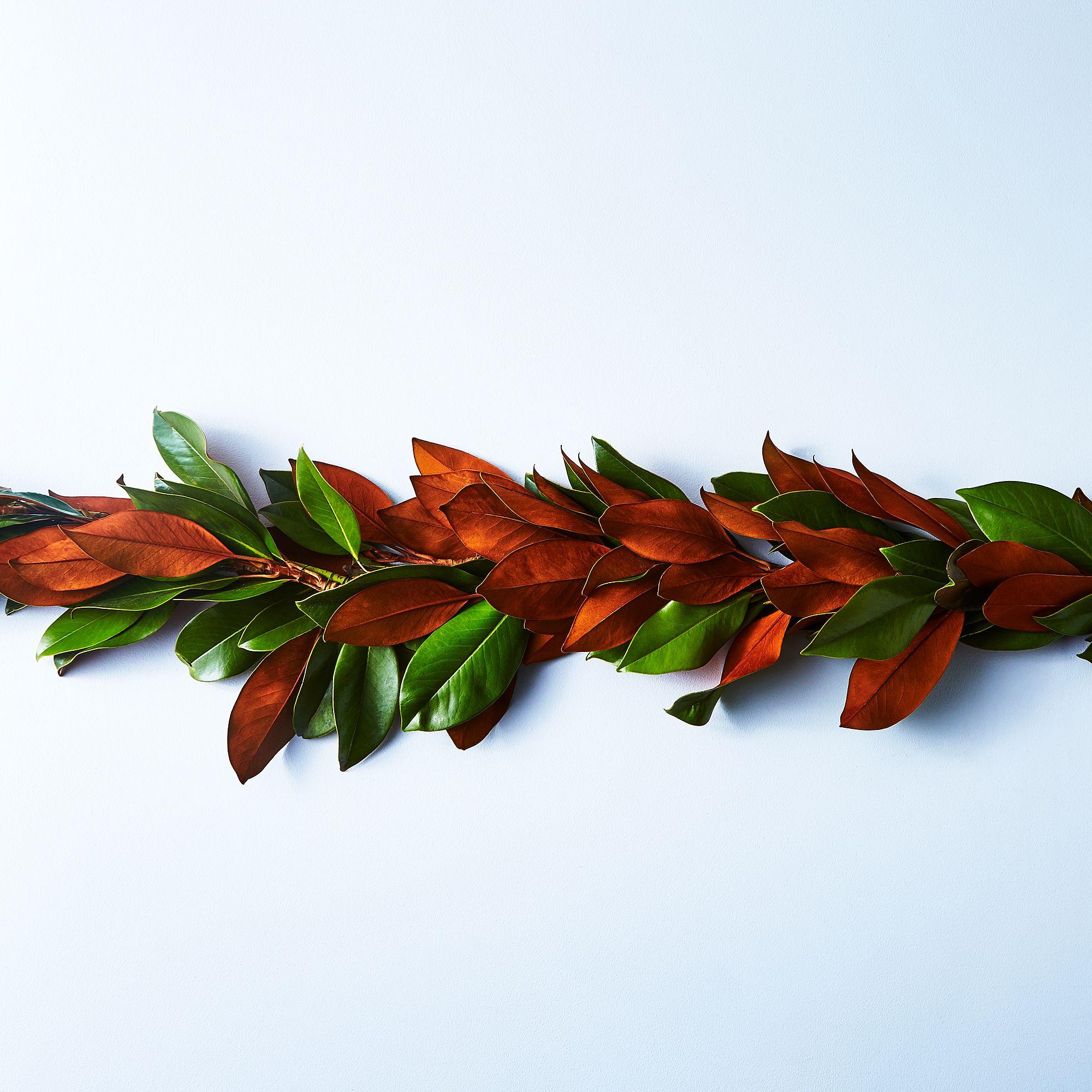 2e85d503 d8e9 4570 a182 e86f2976e05a  2017 0815 creekside farms fall magnolia garland julia gartland 36013