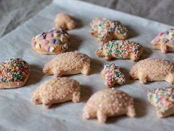 A Reason to Make Sprinkle-Covered Cut-Outs Right Now (Really!)