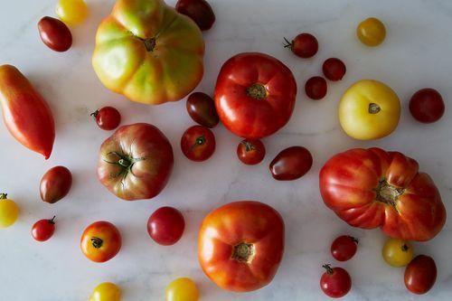 Tomatoes on Food52