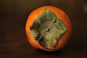 694550e0 0f04 4ae4 a773 35b62143be01  persimmon by sarah schatz
