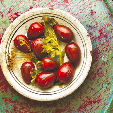 Fermented Tomatoes (Квашенi помiдори | Kvasheni Pomidory)