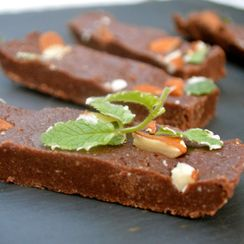 Paleo Mint Chocolate Fudge Bars