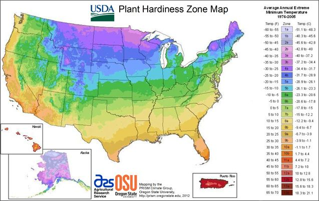 The USDA's zone map. What's your zone?