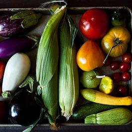 5 Links to Read Before Heading to the Farmers Market