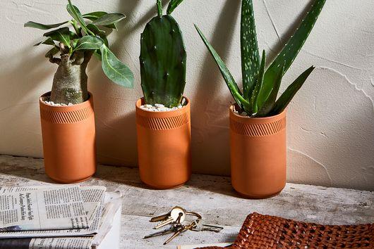 Terra-Cotta Indoor Grow Kits